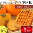 【送料無料】山形県産庄内柿 5kg(30〜37玉前後)※訳あ...