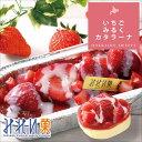 【 みれい菓 】 札幌カタラーナ いちごみるく (320g) アイスクリームみたいな とろけ