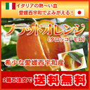 希少なブラットオレンジ(タロッコ)愛媛西宇和産一度は食べる機会のチャンス価格、2注文以上で送料無料