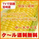 本日さらに最安値■TVで話題の宮崎産!4kg送料無料・クール...