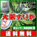 \本日限定500円OFFクーポン付/光センサー糖度...