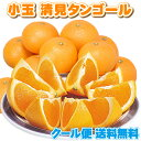 貯蔵蔵出⇒小玉クール 清見タンゴール オレンジ 5kg★大人...