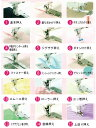 【HZL-Gシリーズ】【JUKI家庭用ミシンアクセサリー/ミシン部品/押え】【定形外便対応】