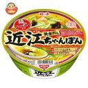 日清食品 麺ニッポン 近江ちゃんぽん 111g×12個入