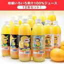 宇都宮物産 果汁100%ジュース 12本詰め合わせセット 500ml瓶×12本×1箱入