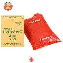 ハグルマ JAS特級 トマトケチャップ 3kg袋パック×4袋入