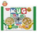 日清食品 日清マグうどん 4食(94g)×12個入