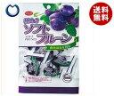 【送料無料】共立食品 ソフト種抜きプルーン ピロ 140g×10袋入 ※北海道・沖縄・離島は別途送料が必要。