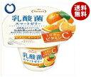 【送料無料】【2ケースセット】たらみ 乳酸菌スマートゼリー ビタミンオレンジ 190g×24(6×4)個入×(2ケース) ※北海道・沖縄・離島は別途送料が必要。
