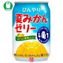 【送料無料】JT ひんやり夏みかんゼリー270g缶×24本入