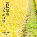 令和元年 宮城県産 ひとめぼれ検査1等玄米30kg【送料無料...