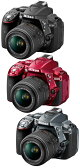 Nikon D5300 18-55VRレンズキット『即納』【あす楽対応】Wi-Fi & GPS バリアングル液晶モニター搭載 D5300ボディー+AF-S DX NIKKOR 18-55mm f/3.5-5.6G VR II【smtb-TK】[02P01Oct16]【コンビニ受取対応商品】
