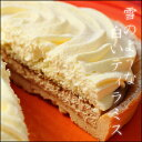 [free shipping] though is a Yokohama tart - snow white tiramisu - trial; well a size 4 hall [marathon201305_ free shipping] [marathon201305_ point]