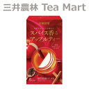 【訳あり】日東紅茶 スパイス香るアップルティー 6本入