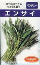 中国野菜 種 エンサイ(ウンチェー)(20ml)