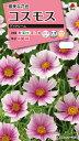 コスモス種デイドリーム(1.5ml)〜花のタネ〜 タキイ