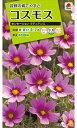コスモス種センセーション ラディアンス(2ml)〜花のタネ〜 タキイ