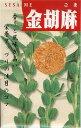 ゴマ種金胡麻(10ml)ごま 胡麻