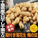 千葉県産 天日干し殻付き落花生 千葉半立 俺の豆 殻付きピーナッツ 全国送料無料 メー
