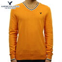 アメリカンイーグル セーター メンズ 正規品 AMERICAN EAGLE Vネックセーター AE TIPPED V-NECK SWEATER 1144
