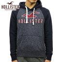 ホリスター パーカー メンズ 正規品 HOLLISTER プルオーバーパーカー Logo Graphic Hoodie 322-226-0125-202