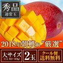 完熟マンゴー!朝穫れたての新鮮な完熟マンゴーを当店が厳選した農家さんからその日のうちに仕入れ、出荷!【お中元】【新鮮】