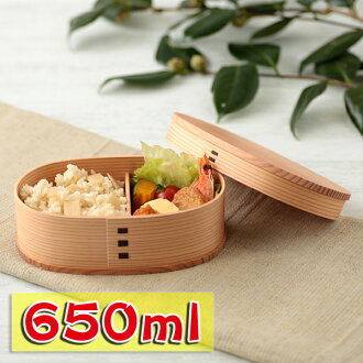 Akita Cedar bend Odate magewappa oval lunch Bento box (medium)
