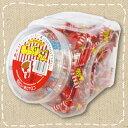 【特価】どんぐりガム コーラ 100付 当たり付 パイン製菓【駄菓子】