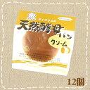 【特価】天然酵母パン クリームパン 12個 デイプラス【卸価格】