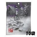 【特価】さくっと食べれるごま飴 60g個包装 10袋【大丸本...
