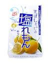 ショッピング熱中症 塩れもんキャンディ 100g×40袋 松屋製菓 生塩レモン 熱中症対策に