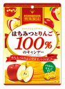 【特価】はちみつとりんご100%のキャンデー 50g×6袋【扇雀飴本舗】
