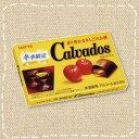 ロッテCalvadosカルヴァドスチョコ 10個入り1BOX【在庫限り】洋酒チョコ期間限定
