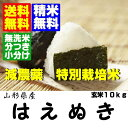 ★10 kg of unpolished rice [free shipping, no-rinse rice, rice with germs correspondence] without 18 24 年連続食味値特 A ★ new rice yearly output special cultivation U.S. Yamagata product fly