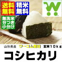 Ooh, 10 kg of com cultivation Koshihikari unpolished rice, free shipping, no-rinse rice, rice with germs supports 24 new rice 年産米食味値特 A acquisition ★ Yamagata products