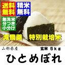 23年産米 送料無料・無洗米分搗き対応特別栽培米ひとめぼれ玄米5kg