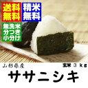 ササニシキは夏場は水加減を10%増やすこと!!ササニシキ玄米3kg【送料無料】【無洗米・分搗き】