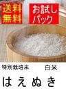 特別栽培米はえぬき白米4合