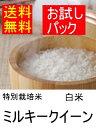 特別栽培米ミルキークイーン白米4合