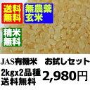 【無農薬玄米】30年産米 お試し玄米セット2kgx2 【北海...