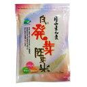 白い発芽胚芽米1kg 無洗米 山形県産はえぬき使用