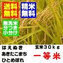 【新米】27年産 山形県産一等米 玄米 30kgは