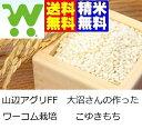 【新米】28年産ワーコム栽培 一等米 山形県産こゆきもち玄米30kg【精米・送料無料】もちこめ もち米