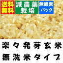 【減農薬 らくらく発芽玄米】 30年産 減農薬米使用 4.5kgx1袋 【無洗米の玄米】