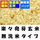 【無農薬】【金のいぶき】瑞穂の国のらくらく発芽玄米 4.5kgx2袋(真空包装)無農薬玄米使用