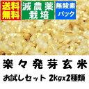 瑞穂の国のらくらく発芽玄米 お試しセット 2kgx2袋(真空包装)減農薬栽培米使用 【金のいぶき・つや姫・ミルキークイーン】