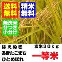 28年産 山形県産一等米 玄米 30kg はえぬき ひとめぼれ あきたこまち 精米・送料無料 小分け・無洗米対応(有料)