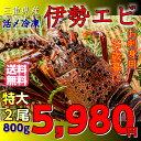 【全品エントリーでポイント14倍】送料無料 活〆冷凍 特大 伊勢海老 (2尾で約800g