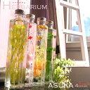ハーバリウム ボトル 植物標本 インテリア 雑貨 ドライフラ...