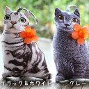 【半額】 ネコ ポーチ 猫 ポシェット 全3デザイン 【 猫 雑貨 ねこ グッズ プレゼント ネコ かわいい スマホ 小物入れ 手提げ バッグ …